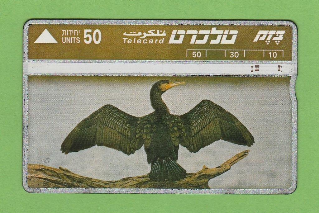 IZRAEL fauna ptak kormoran / seria 422E