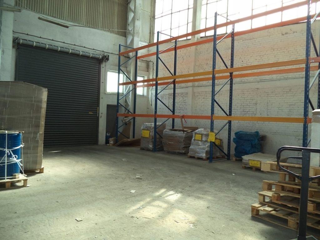 Magazyny i hale, Szczecin, 305 m²