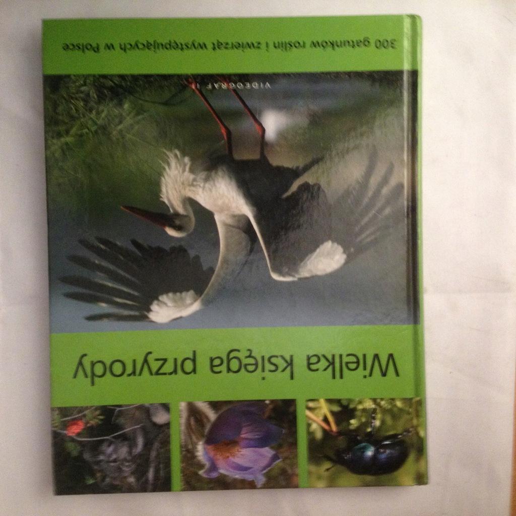Wielka księga przyrody - Bilińscy A. i W. (db.)