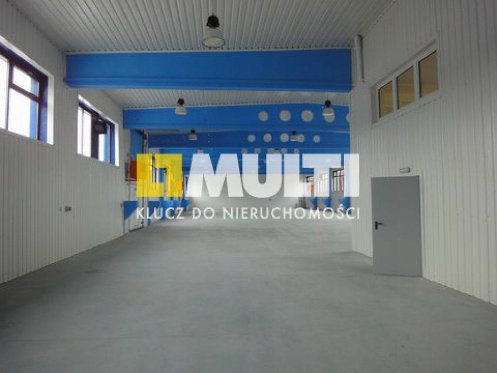 Magazyny i hale, Szczecin, 3500 m²