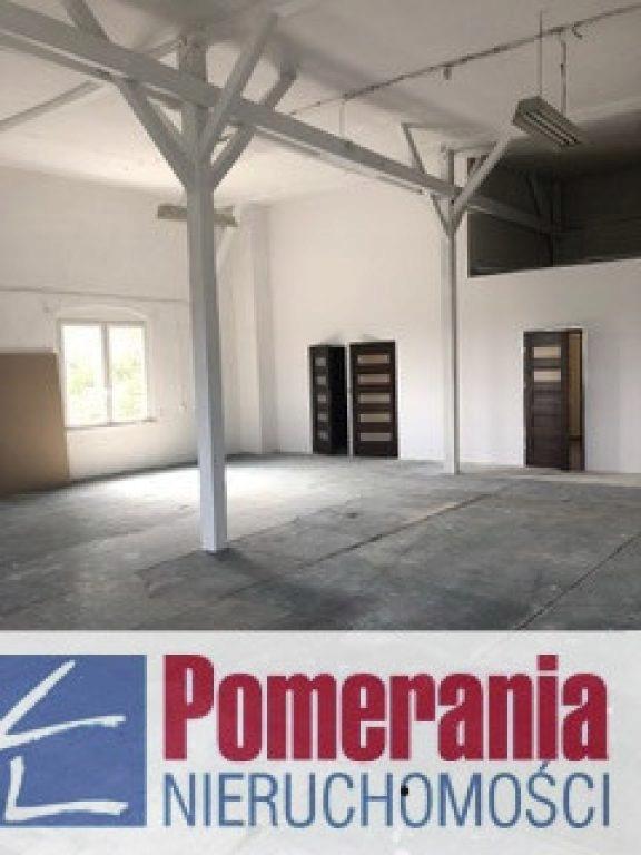 Magazyny i hale, Szczecin, Pomorzany, 50 m²