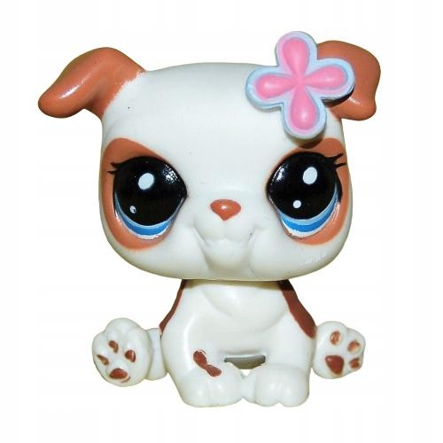 piesek BULDOG #2106 blythe Littlest Pet Shop LPS