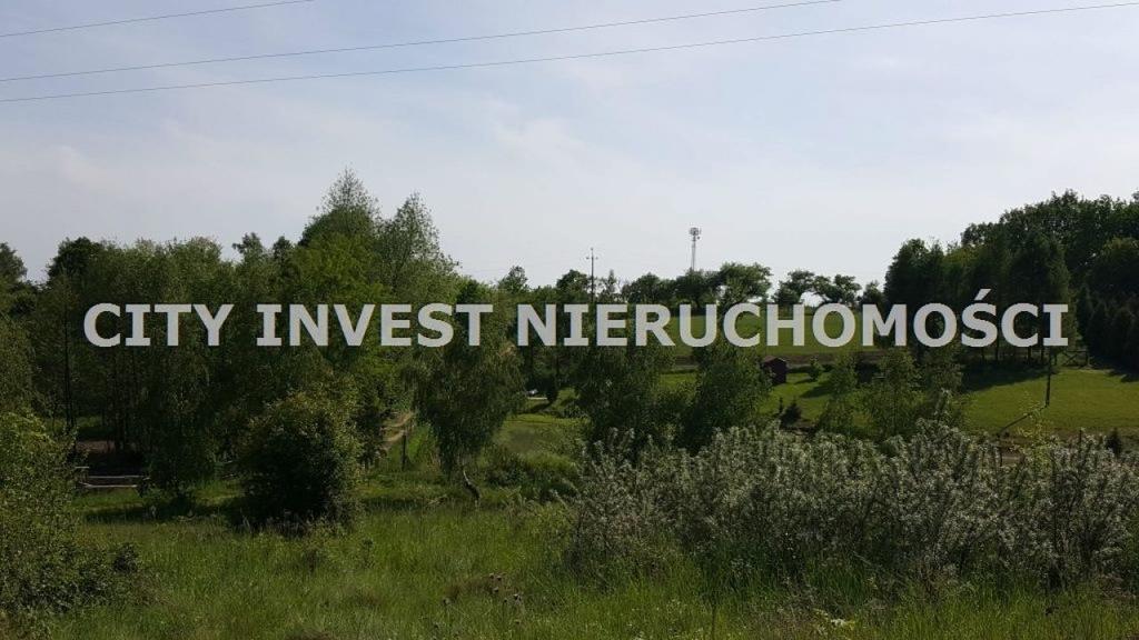 Działka, Łaz, Zabór (gm.), 55000 m²