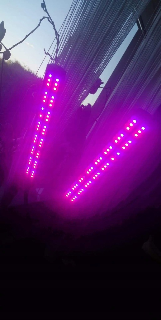 LAMPA LED DO UPRAWY ROŚLIN GROW LIGHT PODWÓJNA 12V
