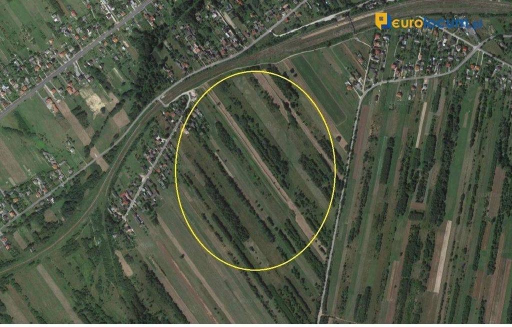 Działka, Czerwona Górka, Łączna (gm.), 24340 m²