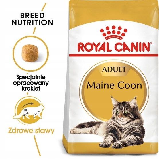 Royal Canin Maine Coon Adult karma sucha dla kotów