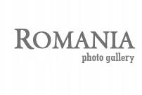 link pozycjonujący na Romania.Oversize.us