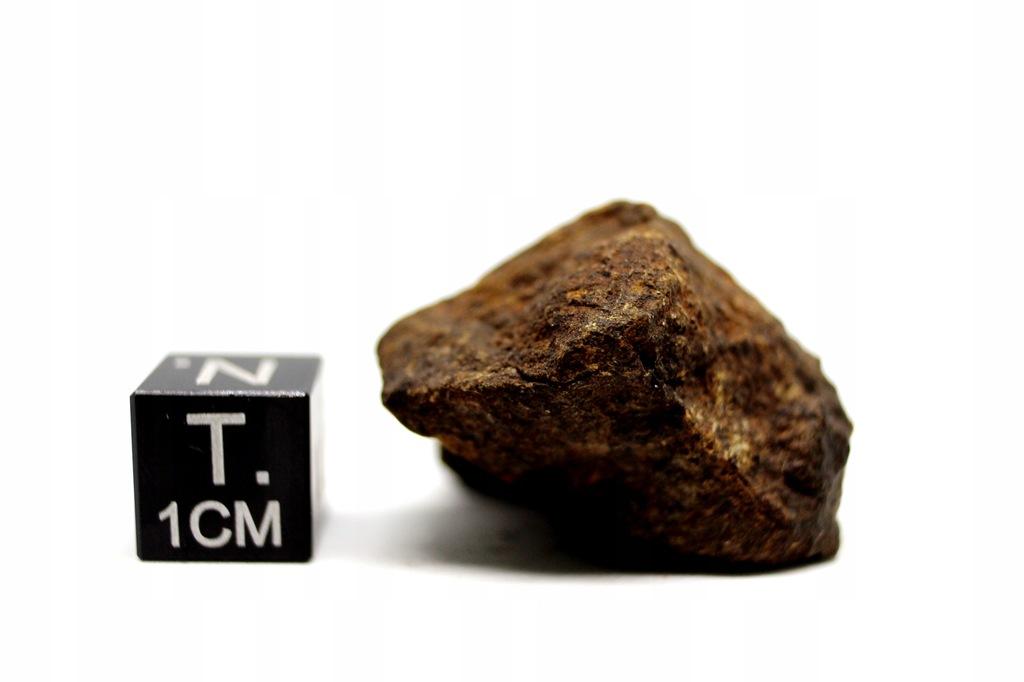 Meteoryt Dhofar 1722, chondryt H5, 16,53 g