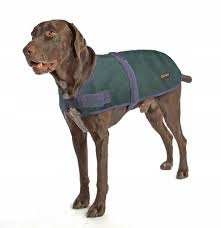 Outback Jack Dog Coat Derka Dla Psa Ocieplacz Xl 7839795031 Oficjalne Archiwum Allegro