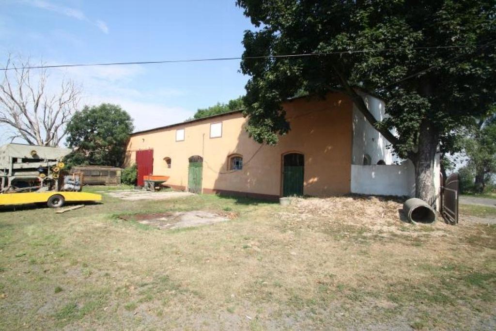 Komercyjne, Sarny Wielkie, Niemodlin (gm.), 305 m²