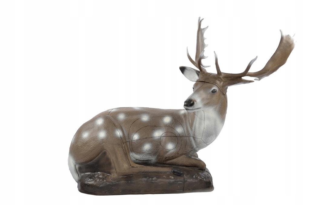FB Fallow Deer, bedded Franzbogen