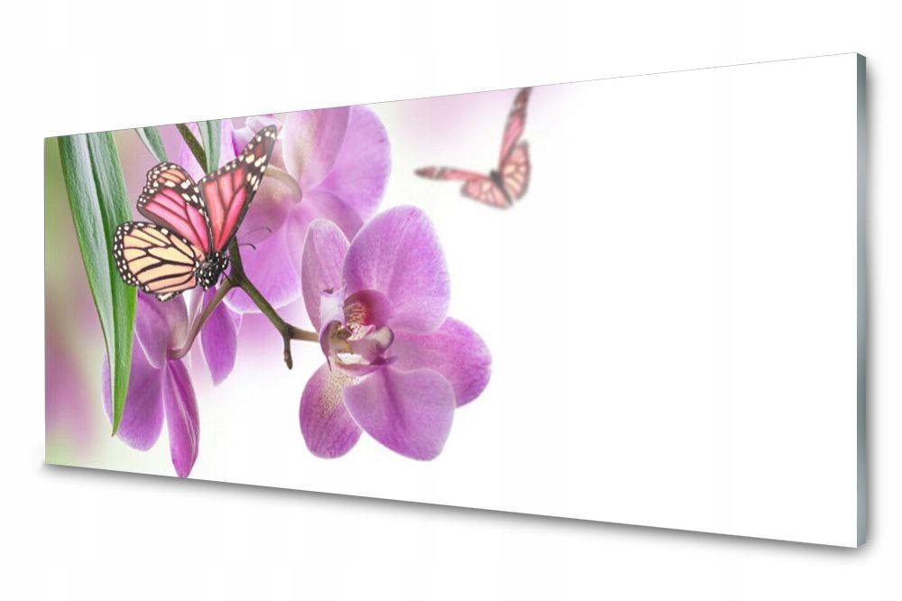 Lacobel Panel Szklany Ścienny Motyle Kwiaty 120x60