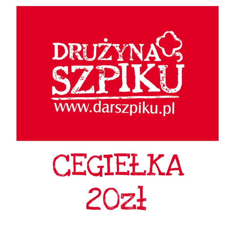 20zł Drużyna Szpiku Allerogal 2017