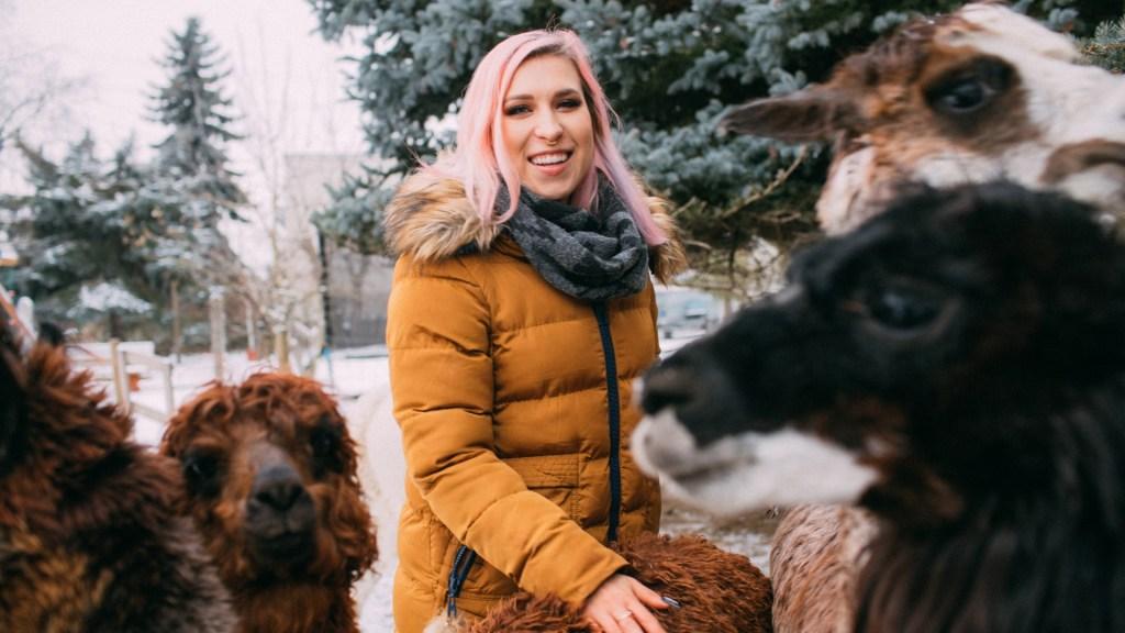 Spacer z alpakami od Agnieszki Grzelak