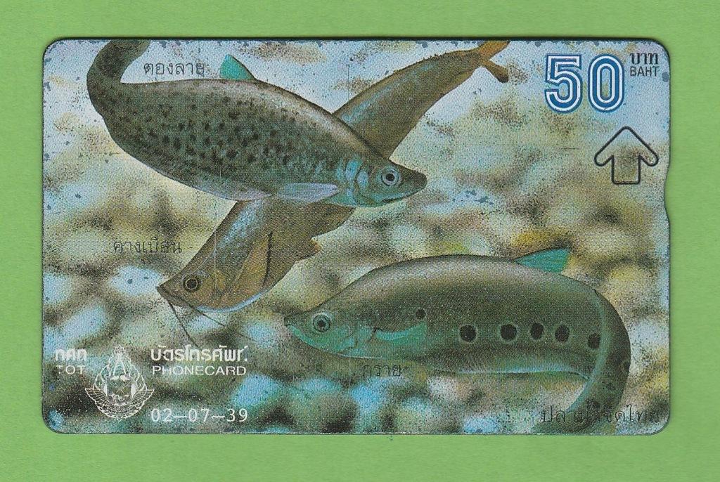 TAJLANDIA fauna ryby / seria 607M