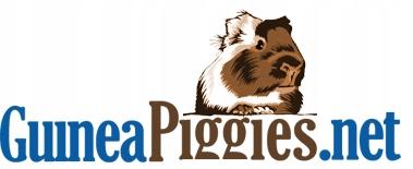 guineapiggies.net   30 dni emisji linku
