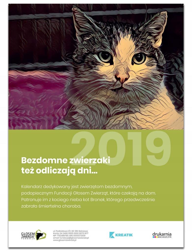 Kalendarz psy i koty Fundacji Głosem Zwierząt