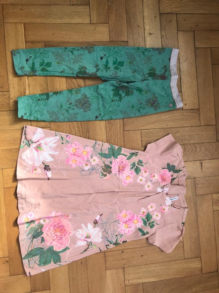 COCCODRILLO sukienka + legginsy SUPER 122