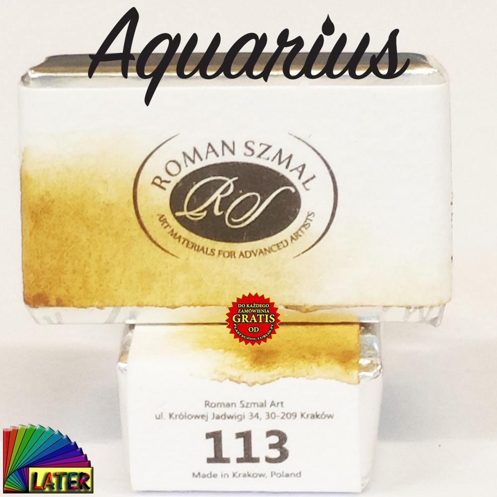 Ochre havana akwarela Aquarius kostka 113 od Later