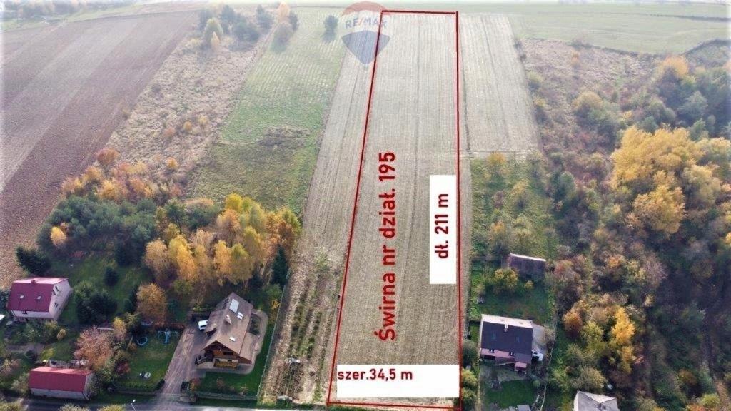 Działka, Świrna, Bodzechów (gm.), 8000 m²