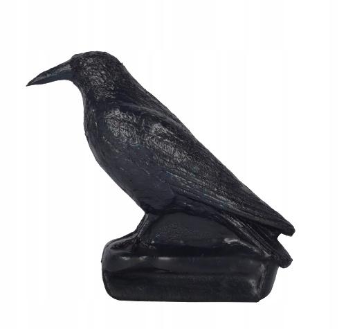 FB Crow Franzbogen