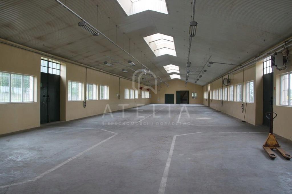 Magazyny i hale, Gryfino, Gryfino (gm.), 1100 m²