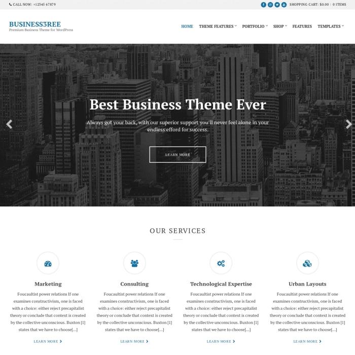Szablon Business / Portfolio WordPress Theme