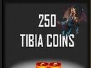 250 tibia coins coin 30 DNI PACC
