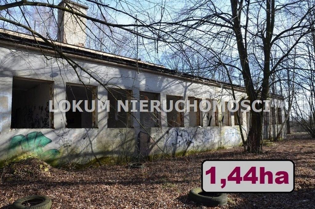 Magazyn Szczucin, dąbrowski, m²
