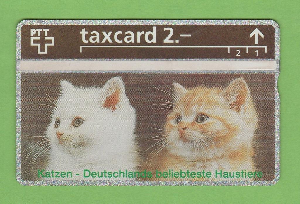 SZWAJCARIA pełna fauna koty / seria 344L