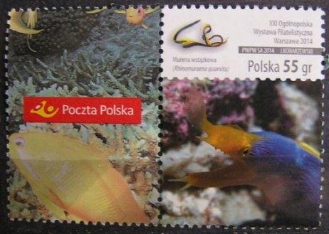 Fi 4568 - luzak, Ryby z przyw. Poczta Polska