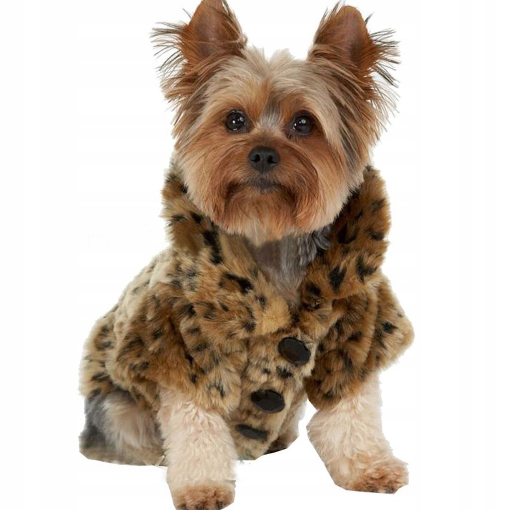 Fashion Luxury Leopard Flush Warm Keeping Dog Jack