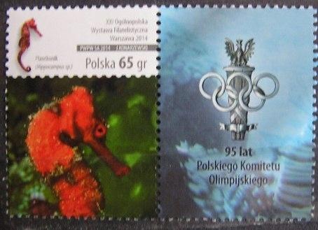 Fi 4569 - luzak, Ryby z przyw. PKOl