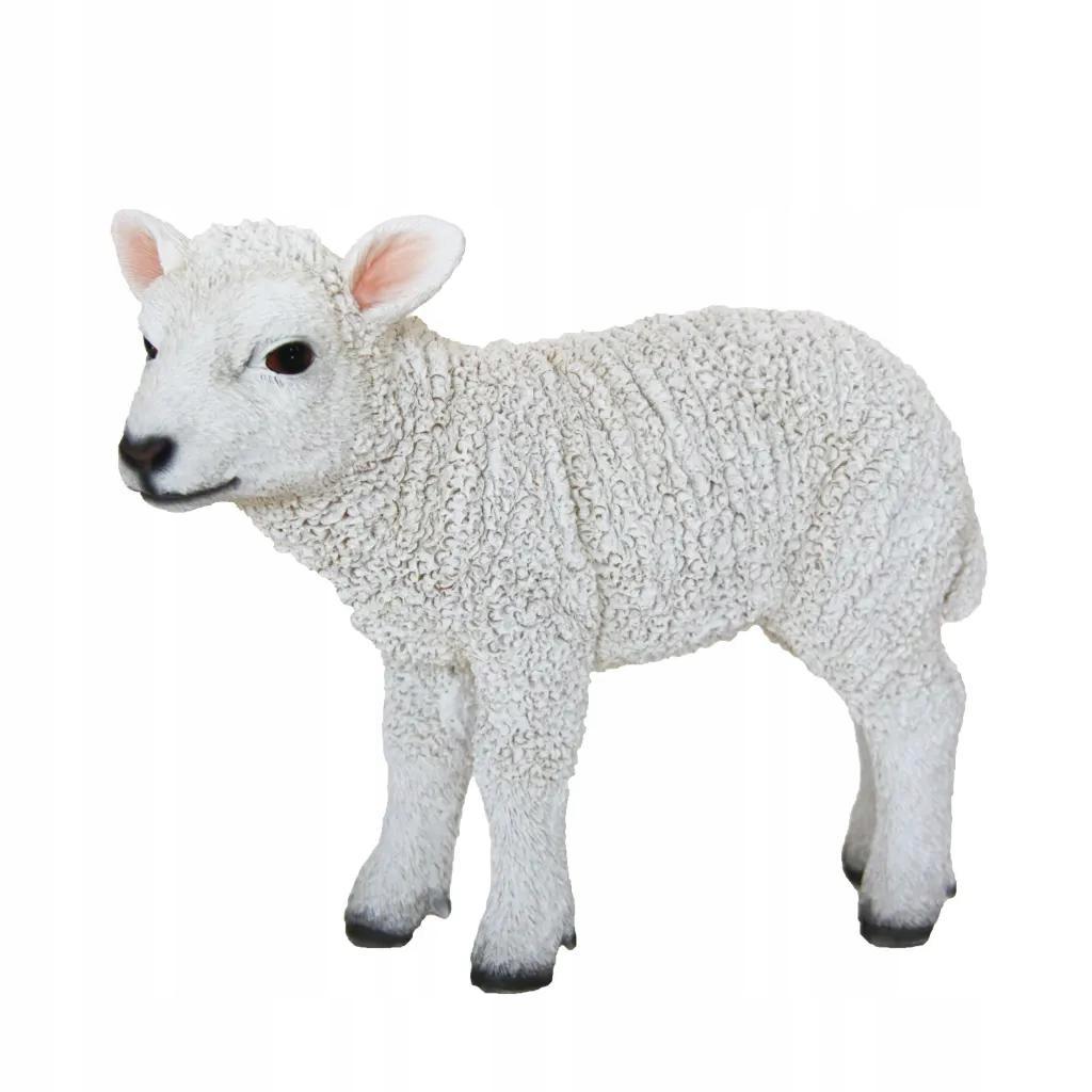 Figurka Stojącej Owieczki Do Oczka Wodnego