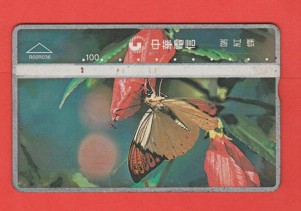 TAJWAN fauna owady motyl / R00R036 / seria 041L