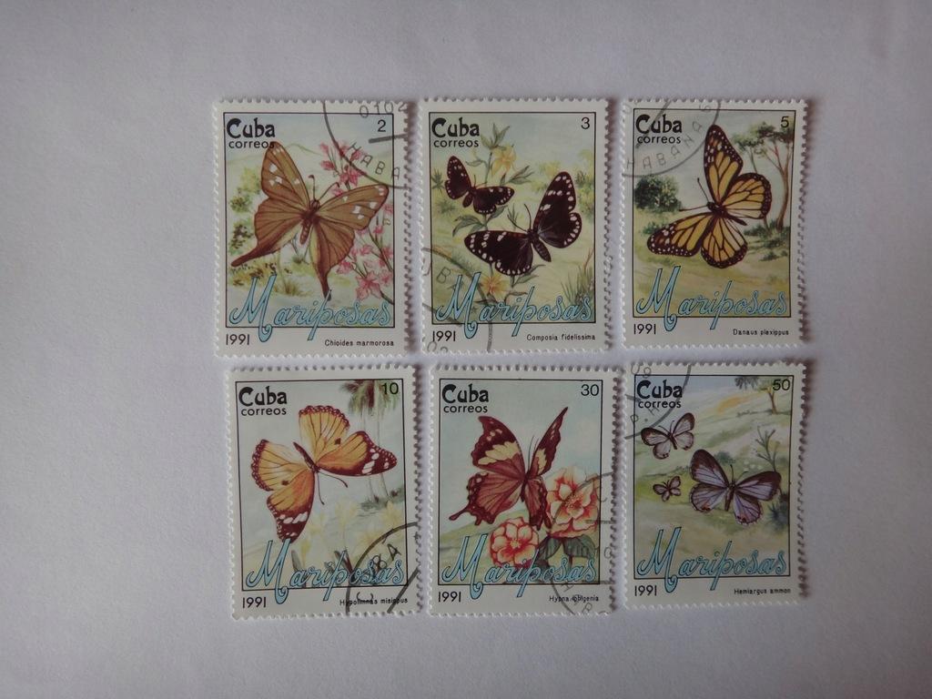 Kuba 1991 , Motyle