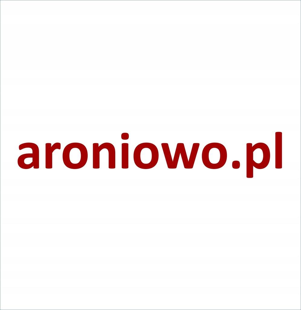 Domena aroniowo.pl dla sok z aronii, aronia sok