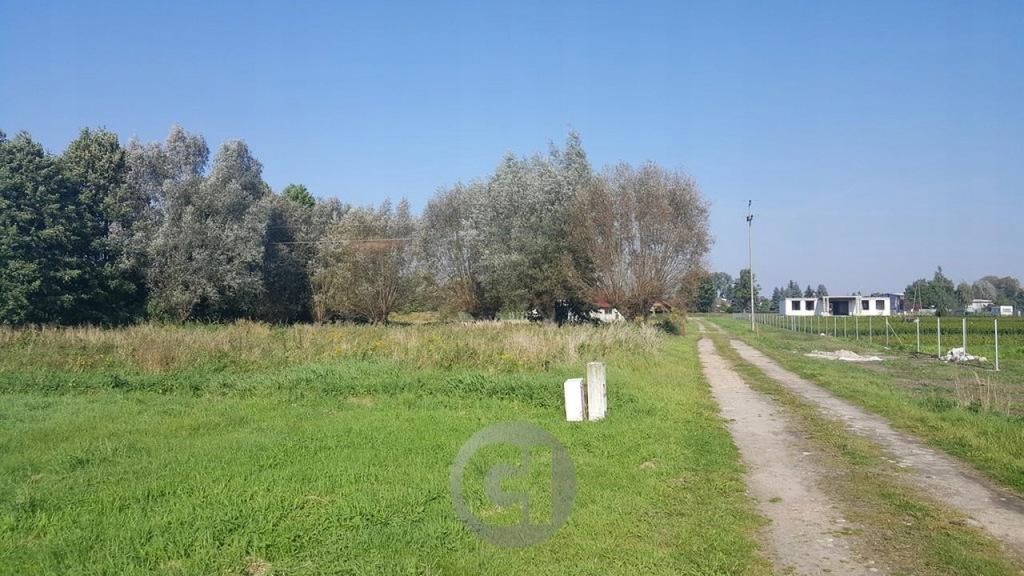 Działka, Łagodzin, Deszczno (gm.), 1155 m²