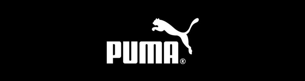 buty Puma Rebound V2 Hi Jr 356808 05 r37,5