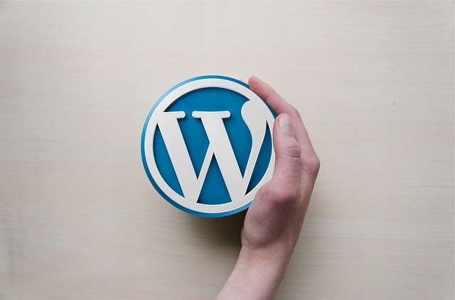Pomoc WordPress - Przyśpiesz, ulepsz i zabezpiecz