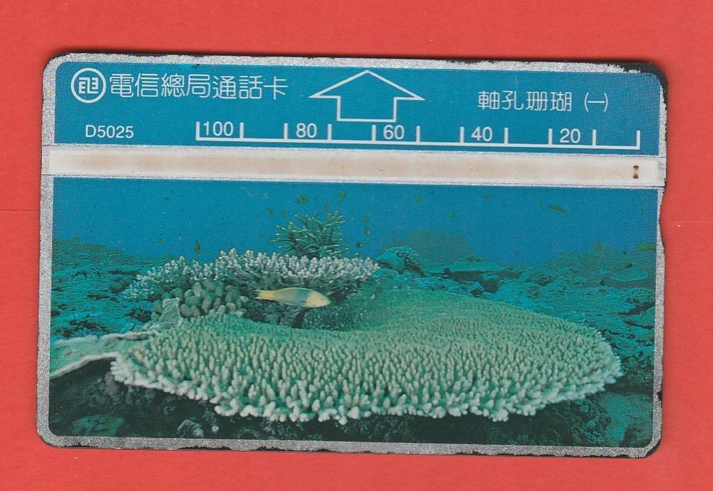 TAJWAN fauna morska ryba / D5025 / seria 506L