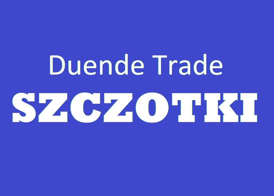 BRUTTO Szczotka 701 (2x8)x32x37 EL195 L-90X b/M6