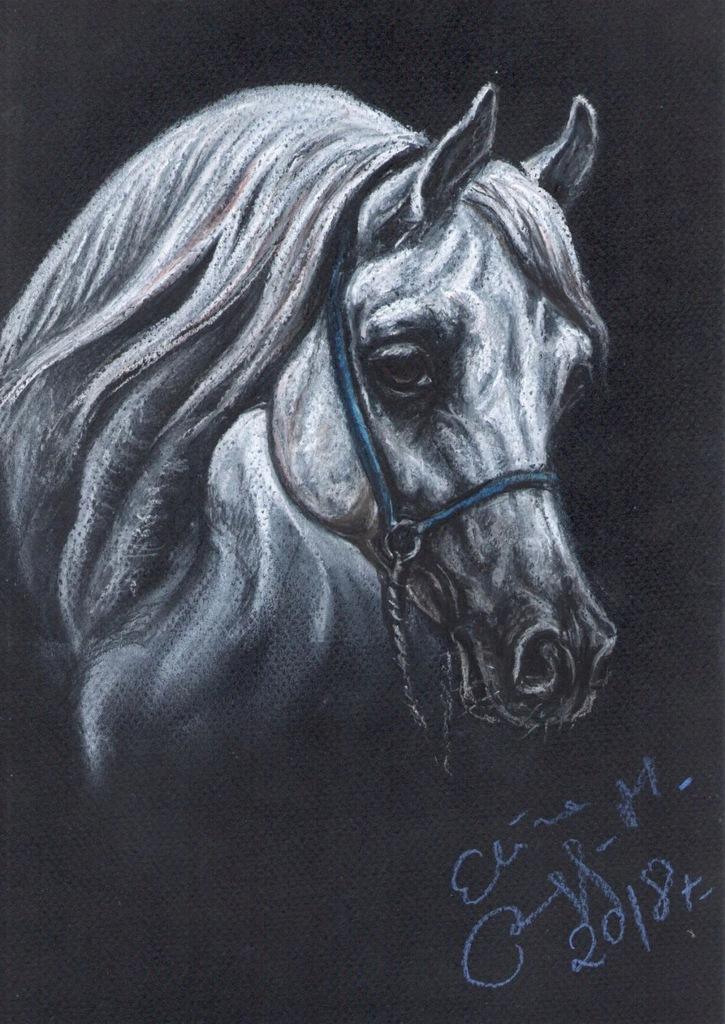 Koń - portret w pasteli