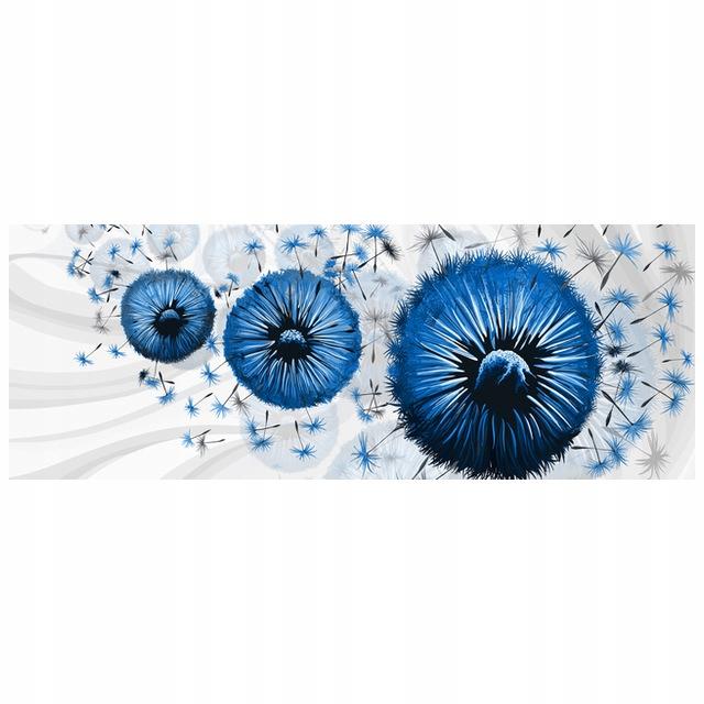 OKLEINA Niebieskie dmuchawce 5 268x100