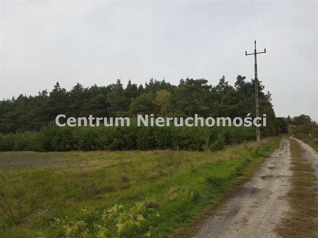 Działka, Bałdrzychów, Poddębice (gm.), 21000 m²