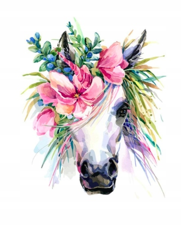 Malowanie po numerach liczbami płótno Koń kwiaty