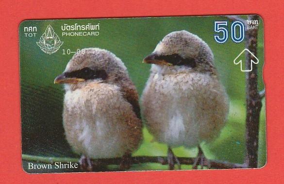 TAJLANDIA fauna ptaki / seria 746C