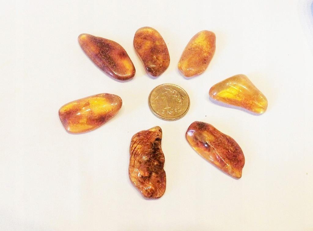 BURSZTYN - bryłki wypolerowane 6,0 g (13)