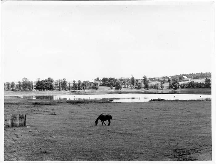 fotografia 1939-44 Lyski pow. Rybnik Weide und Fis