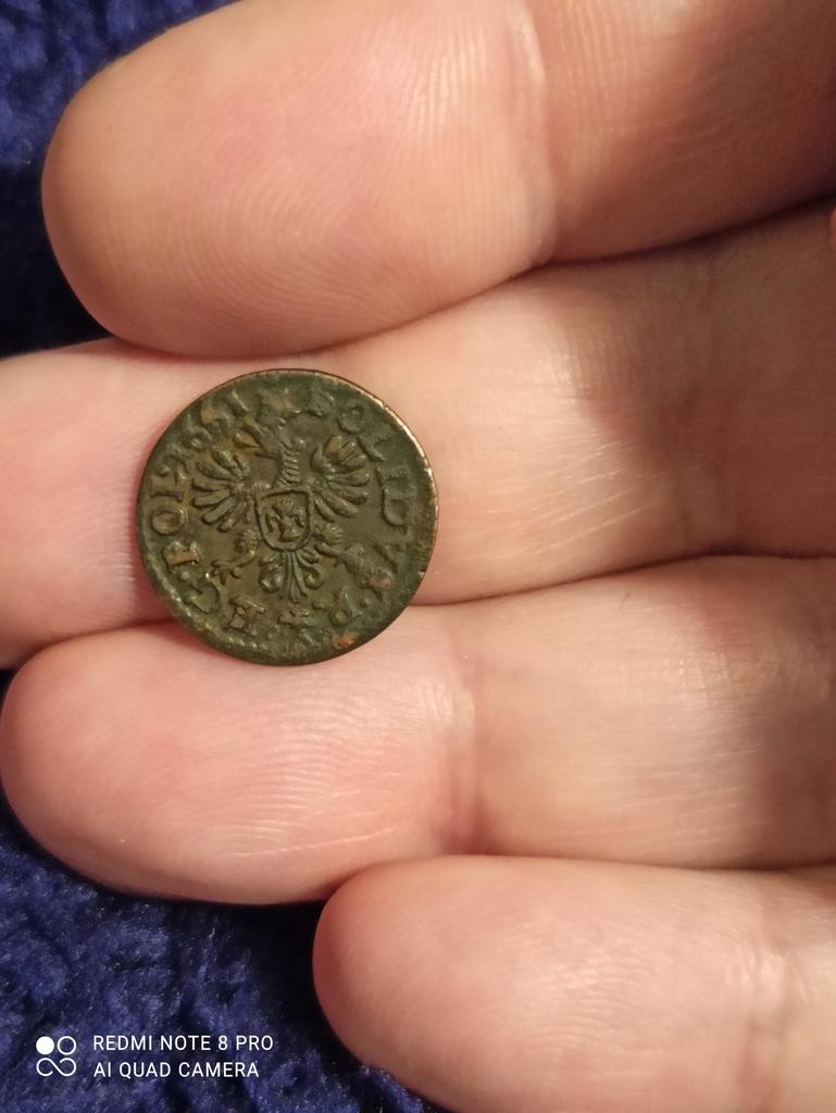 Szeląg boratynka SOLIDVS K61 1661 piękna rzadkość